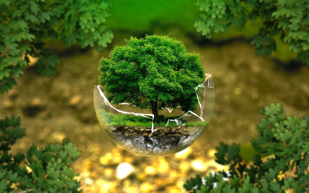 Le saviez-vous ? #5 – la gamme éco-responsable