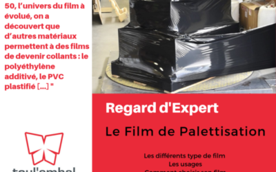 REGARD D'EXPERT – LE FILM DE PALETTISATION